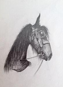Image-1 (15)